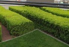 Abba River Commercial landscaping 1