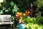 Abba River Tropical landscaping 11