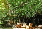 Abba River Tropical landscaping 14