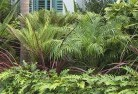 Abba River Tropical landscaping 2